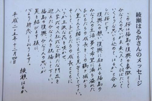 綾瀬はるかさんの文字診断 | 文字を変えて一気にランクアップ!起業家・経営者のための成功文字力アカデミー