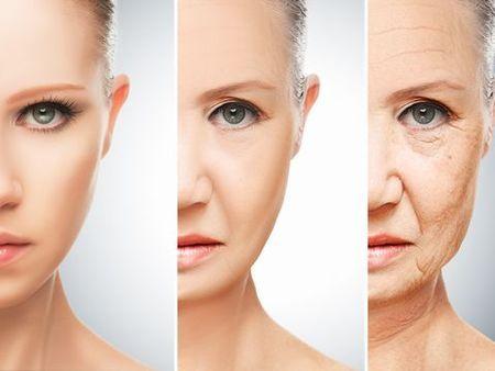 世界的名医に聞く!老化・老化現象と正しい老化防止法   バッタを ...