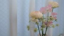 玄関の花々