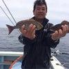 26日の釣果の画像