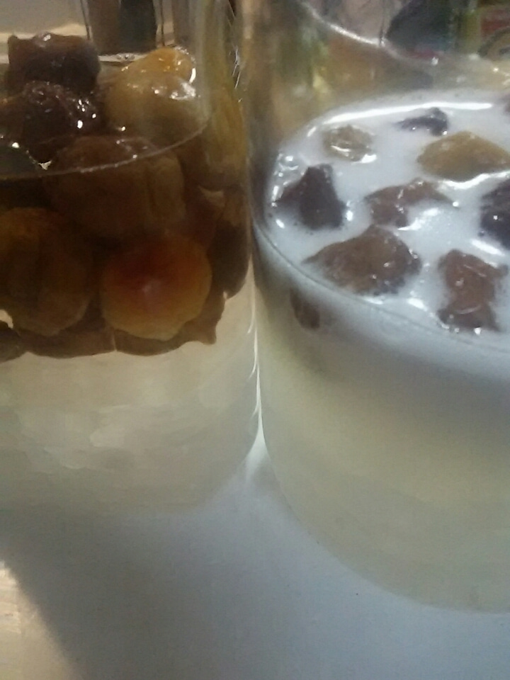 シロップ 発酵 梅