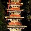 日光東照宮御鎮座400年記念 和楽器バンドLIVEの画像