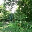 木漏れ日の庭・・・・…