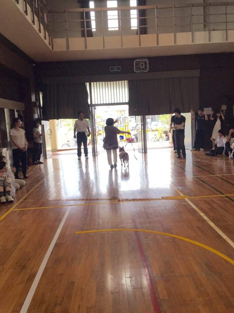 豊中市第一中学校4