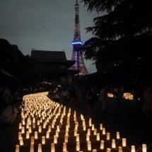 増上寺 七夕祭り 和…