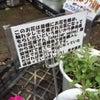 熊本へココロハナ♡の画像