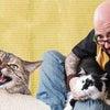 猫ヘルパー 最高!の画像