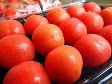 ジュドベベ トマト