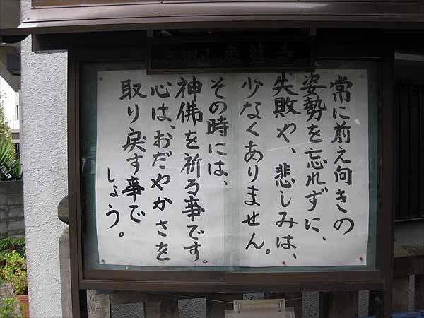 IMG_9927_R.JPG