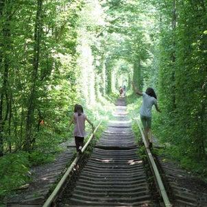 ひさびさの愛のトンネルでした~の画像