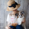 ■夏の犬ごはんレッスンのスタイリングアイデア出しの画像