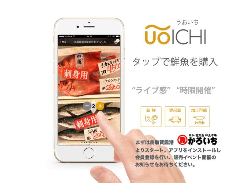 鮮魚が購入できるアプリ UOICHI