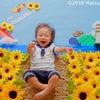 【出展】三鷹産業プラザまるごと夏まつり『ひまわり畑』おひるねアート撮影体験会の画像