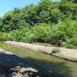 北海道で化石発掘体験…