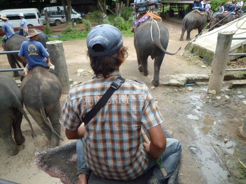 象に乗って川を渡って山登り!象の背中は広い☆1