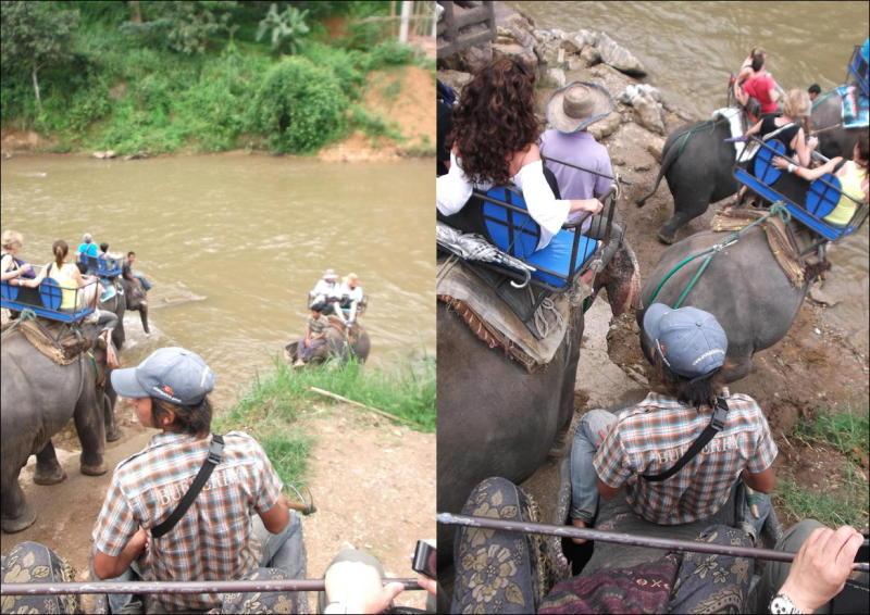 象に乗って川を渡って山登り!象の背中は広い☆2