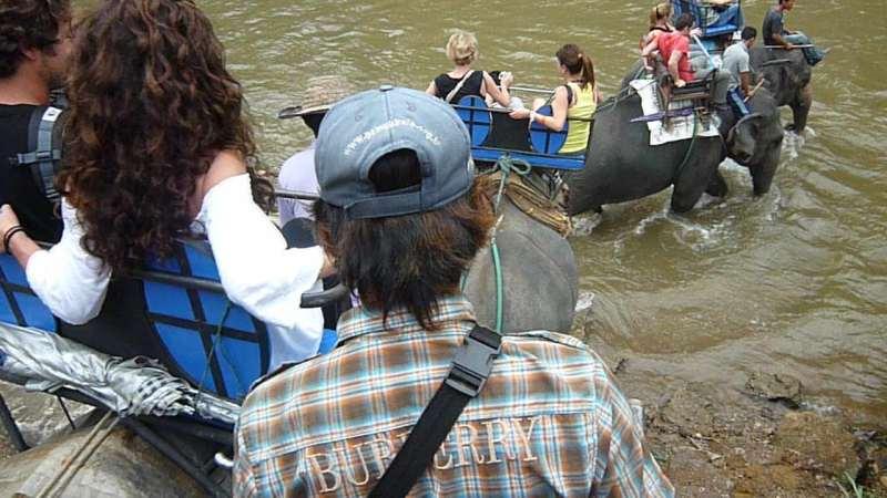 象に乗って川を渡って山登り!象の背中は広い☆4