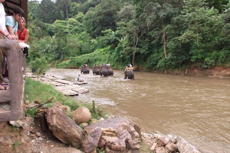 象に乗って川を渡って山登り!象の背中は広い☆3