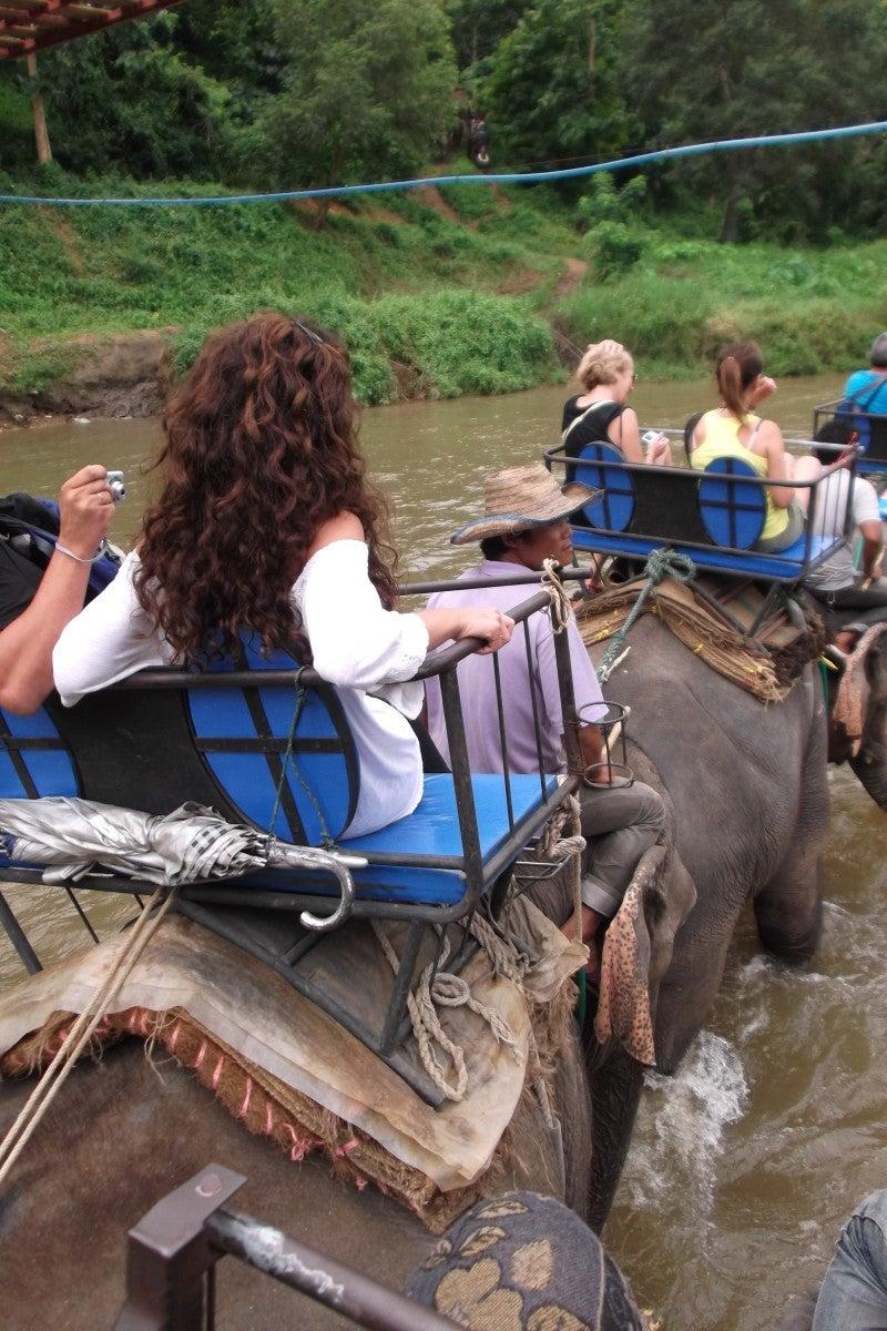 象に乗って川を渡って山登り!象の背中は広い☆5