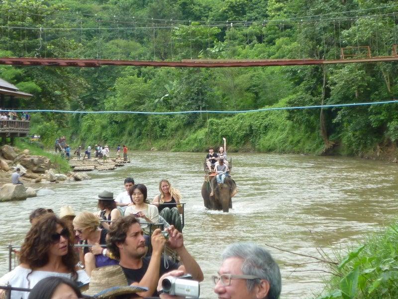 象に乗って川を渡って山登り!象の背中は広い☆9
