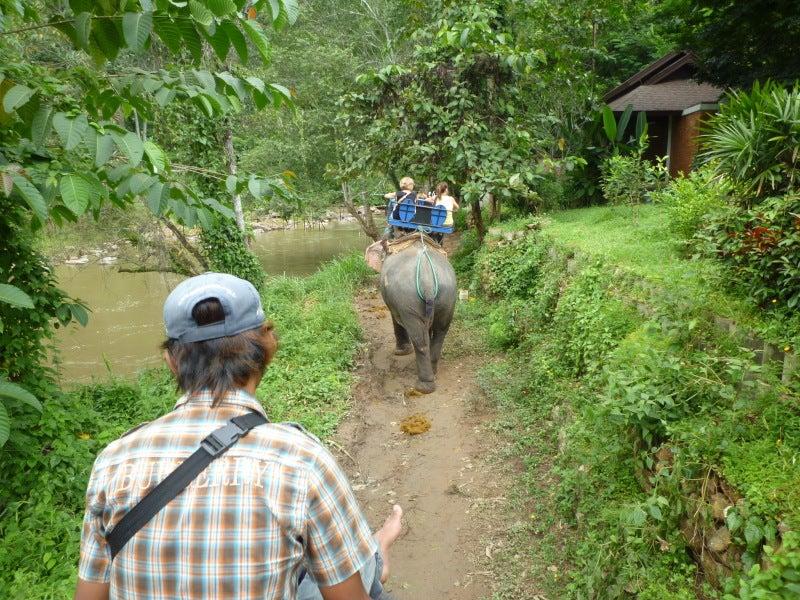 象に乗って川を渡って山登り!象の背中は広い☆28