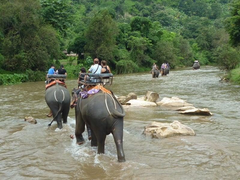 象に乗って川を渡って山登り!象の背中は広い☆16