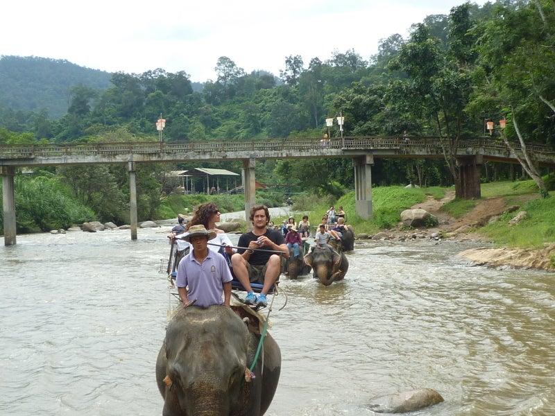 象に乗って川を渡って山登り!象の背中は広い☆17