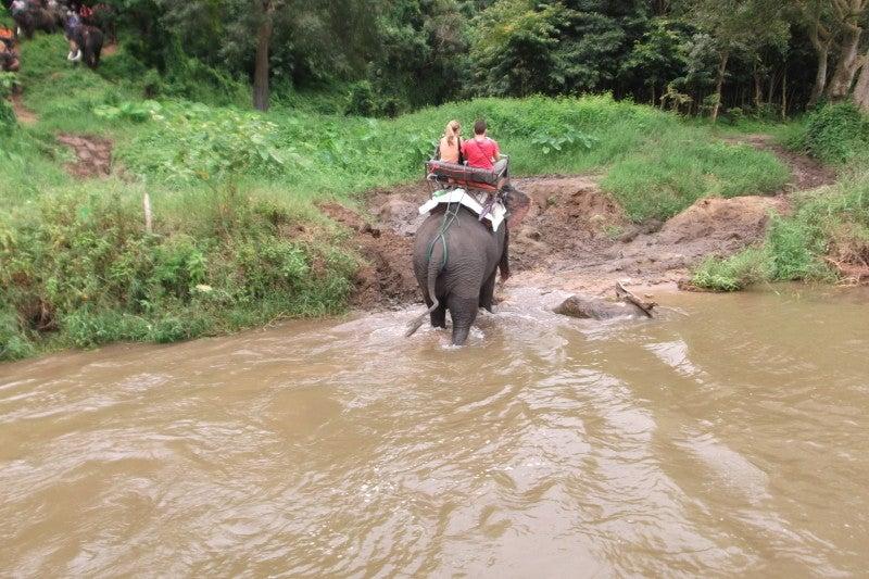 象に乗って川を渡って山登り!象の背中は広い☆10