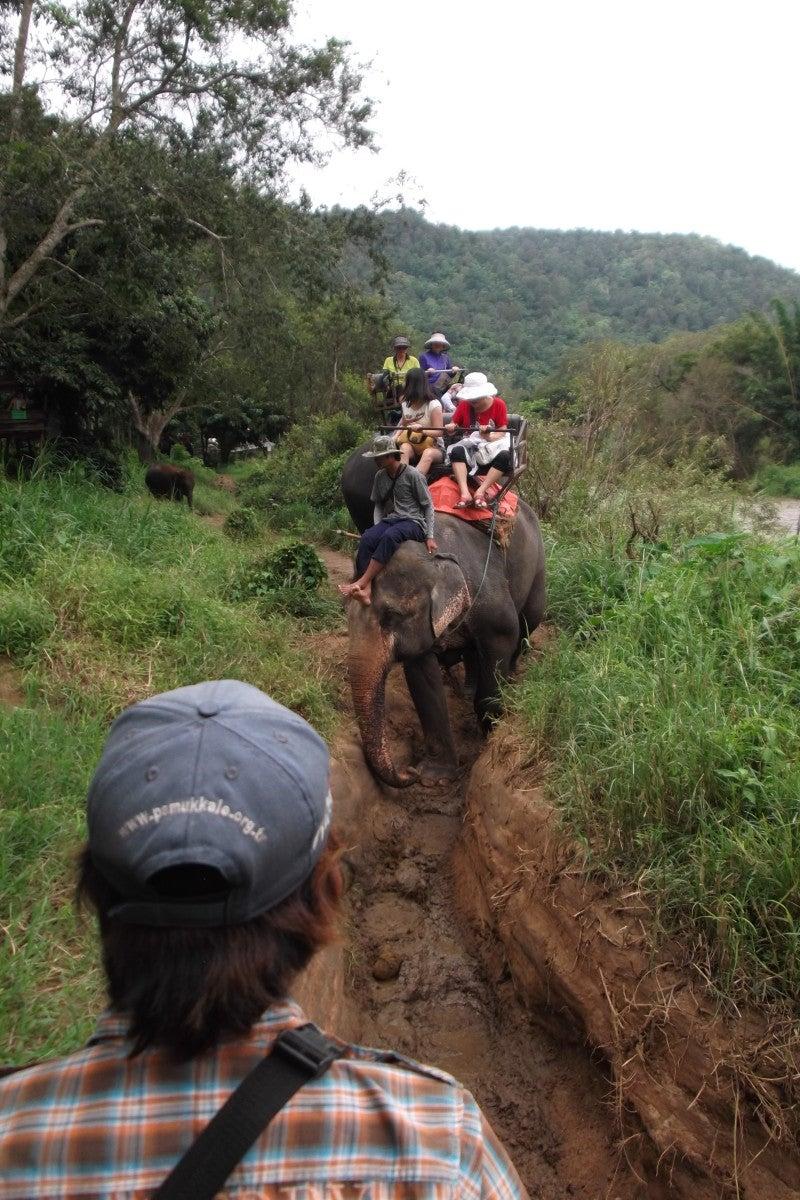 象に乗って川を渡って山登り!象の背中は広い☆12