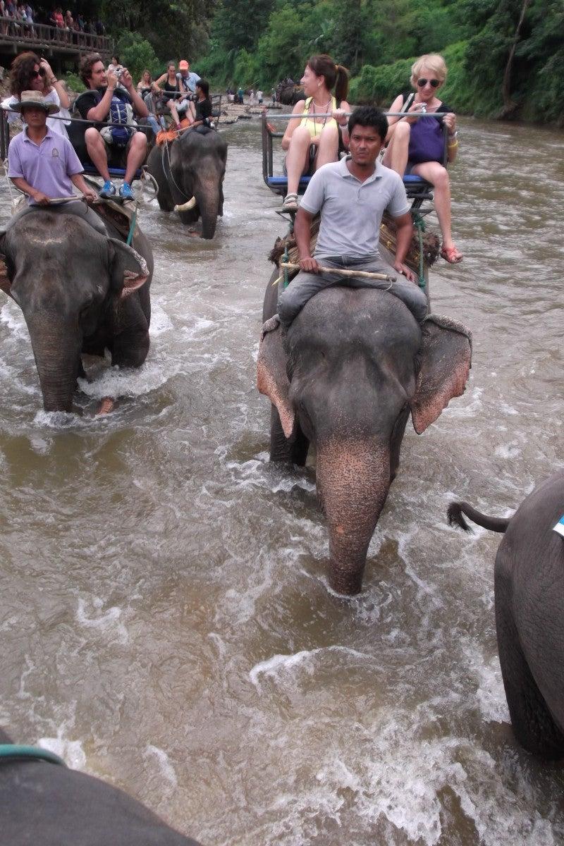 象に乗って川を渡って山登り!象の背中は広い☆8