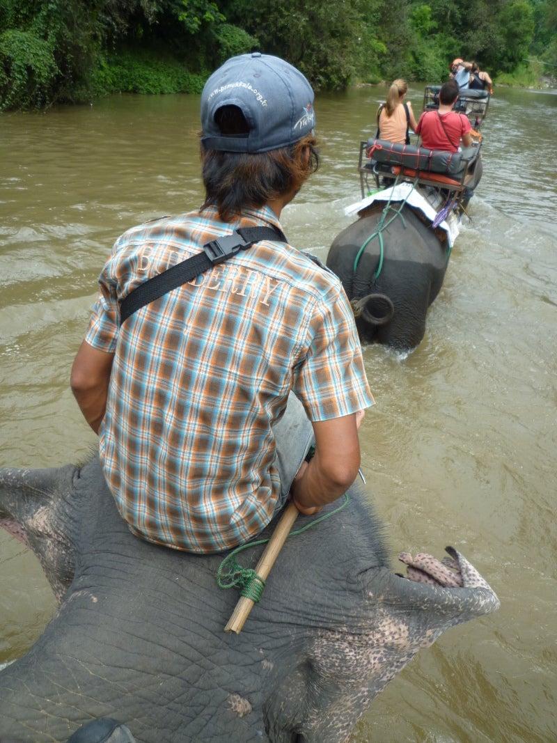 象に乗って川を渡って山登り!象の背中は広い☆19