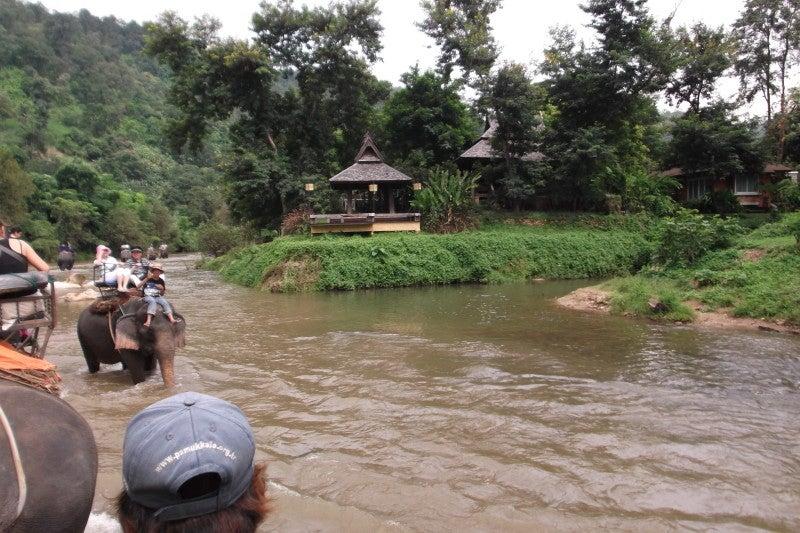 象に乗って川を渡って山登り!象の背中は広い☆21
