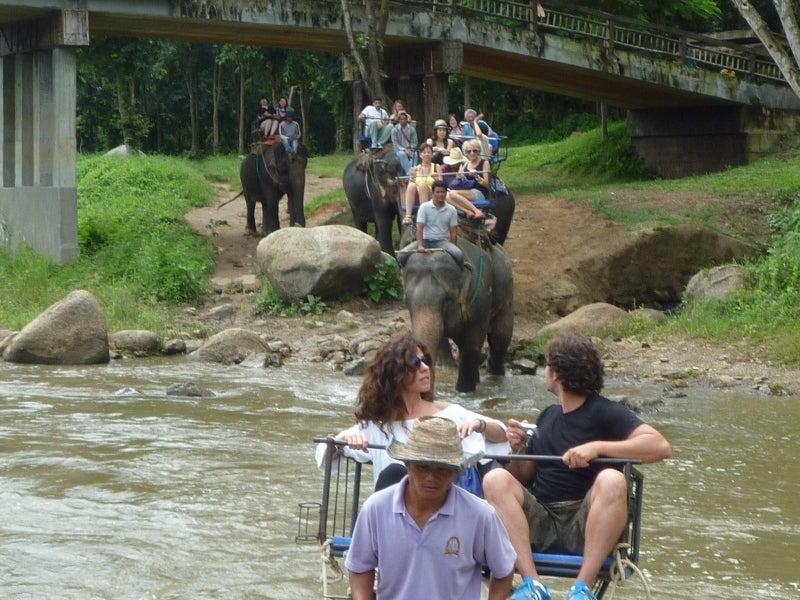 象に乗って川を渡って山登り!象の背中は広い☆15
