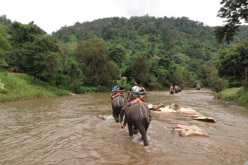 象に乗って川を渡って山登り!象の背中は広い☆24