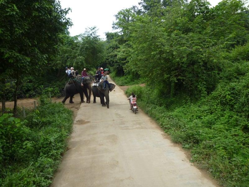 象に乗って川を渡って山登り!象の背中は広い☆35
