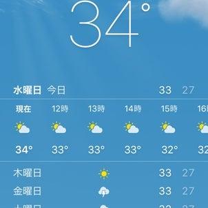 高雄!熱い!暑い!の画像