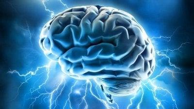 ポジティブな脳