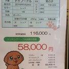 7月29日(金)☀の記事より