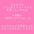 7月30日(土)☀の記事より