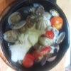 アウトドア料理研究の画像