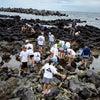大島キャンプ Day7の画像