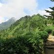 7月31日 石鎚山
