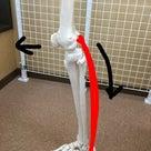 膝の痛みの記事より