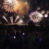 今年も宍道湖の水郷祭の画像