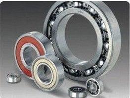 CULT-bearing2