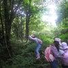7/7(日)セレンの森のようちえん1日コース開催 相乗りご参加、募集中です。の画像