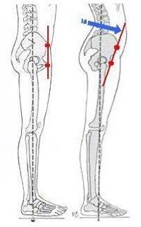 「骨盤立てる」の画像検索結果
