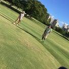お誕生日会はゴルフとHale Veitnam ハレベトナム♡の記事より