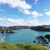 ニュージーランドは温かいの画像