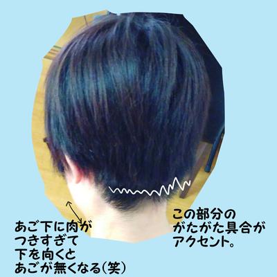 髪を切った話の記事に添付されている画像